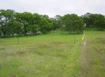Fishing Line Deer Fence
