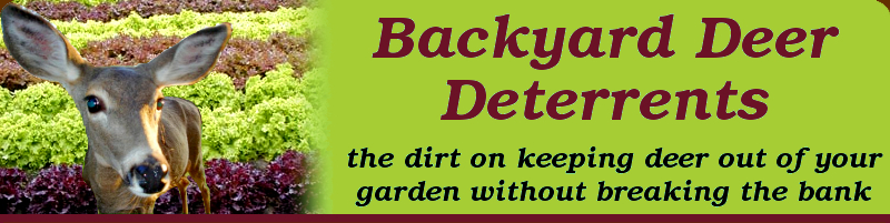 Backyard Deer Deterrents: the dirt on keeping deer out of your garden without breaking the bank.